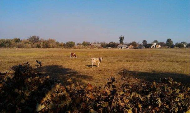 Осеннее село.