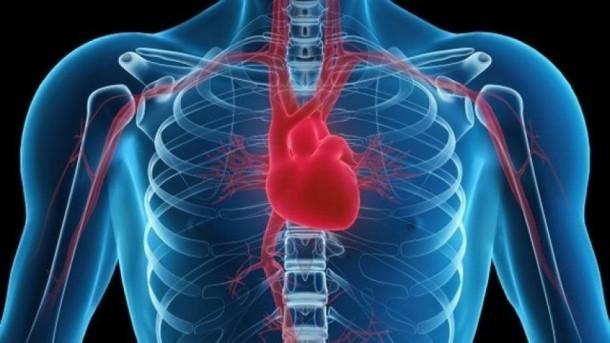 Таблетки кальция и артерии