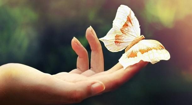 Всемирный День Доброты каждый день
